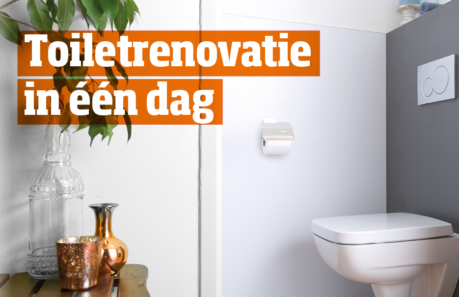 Toiletrenovatie in 1 dag